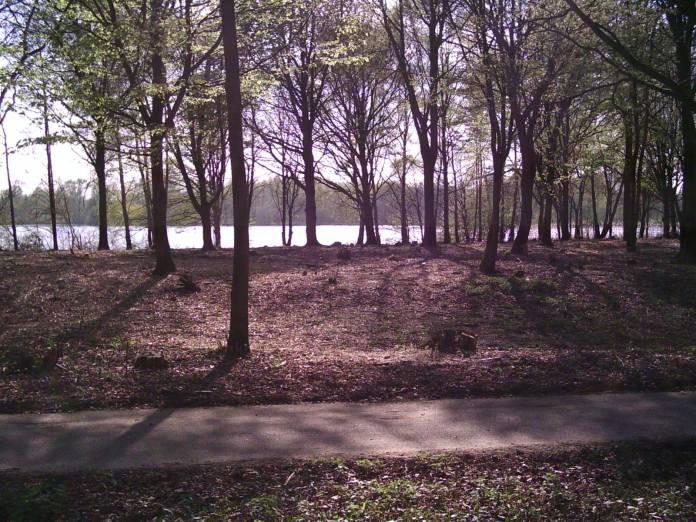 BerendonckStaddijk20110408 003