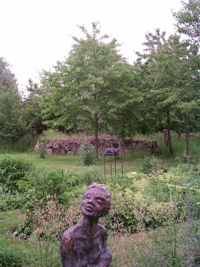 Brakkenstein Botanische tuin 016